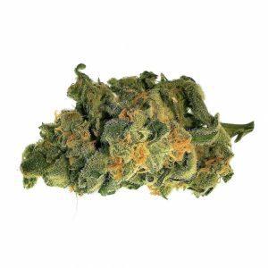 Sativa Weed Strains UK